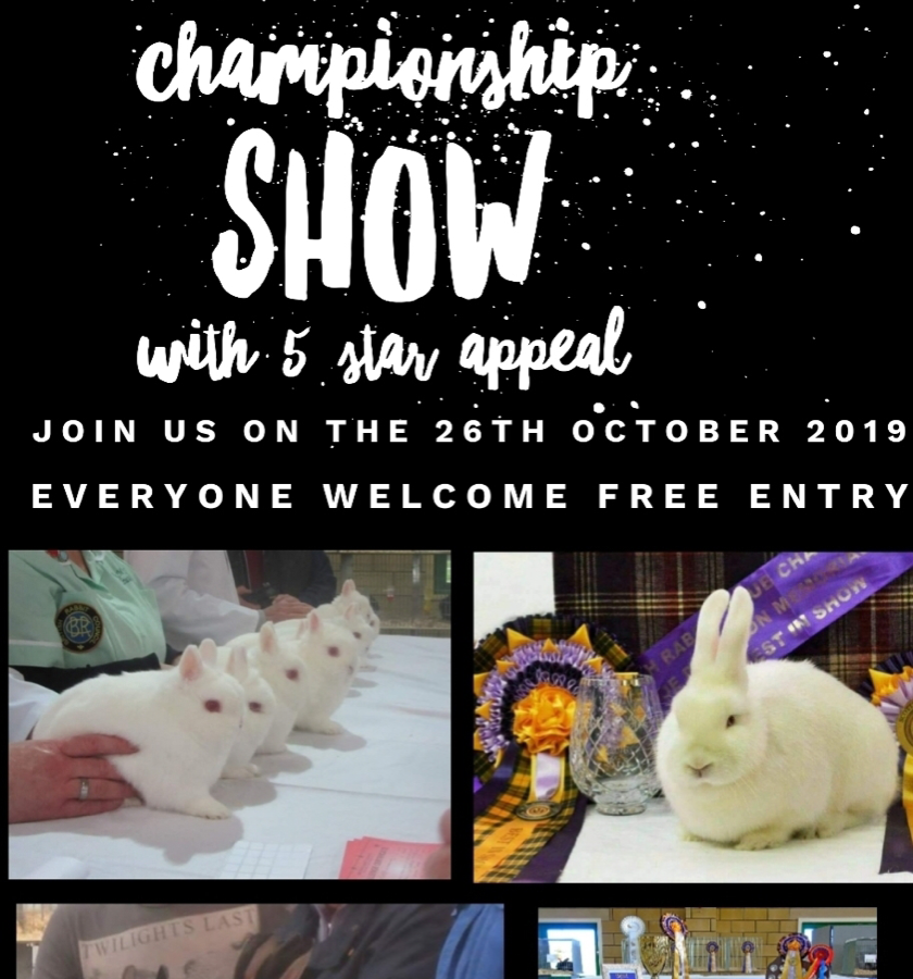 Scottish Rabbit Club Championship Show
